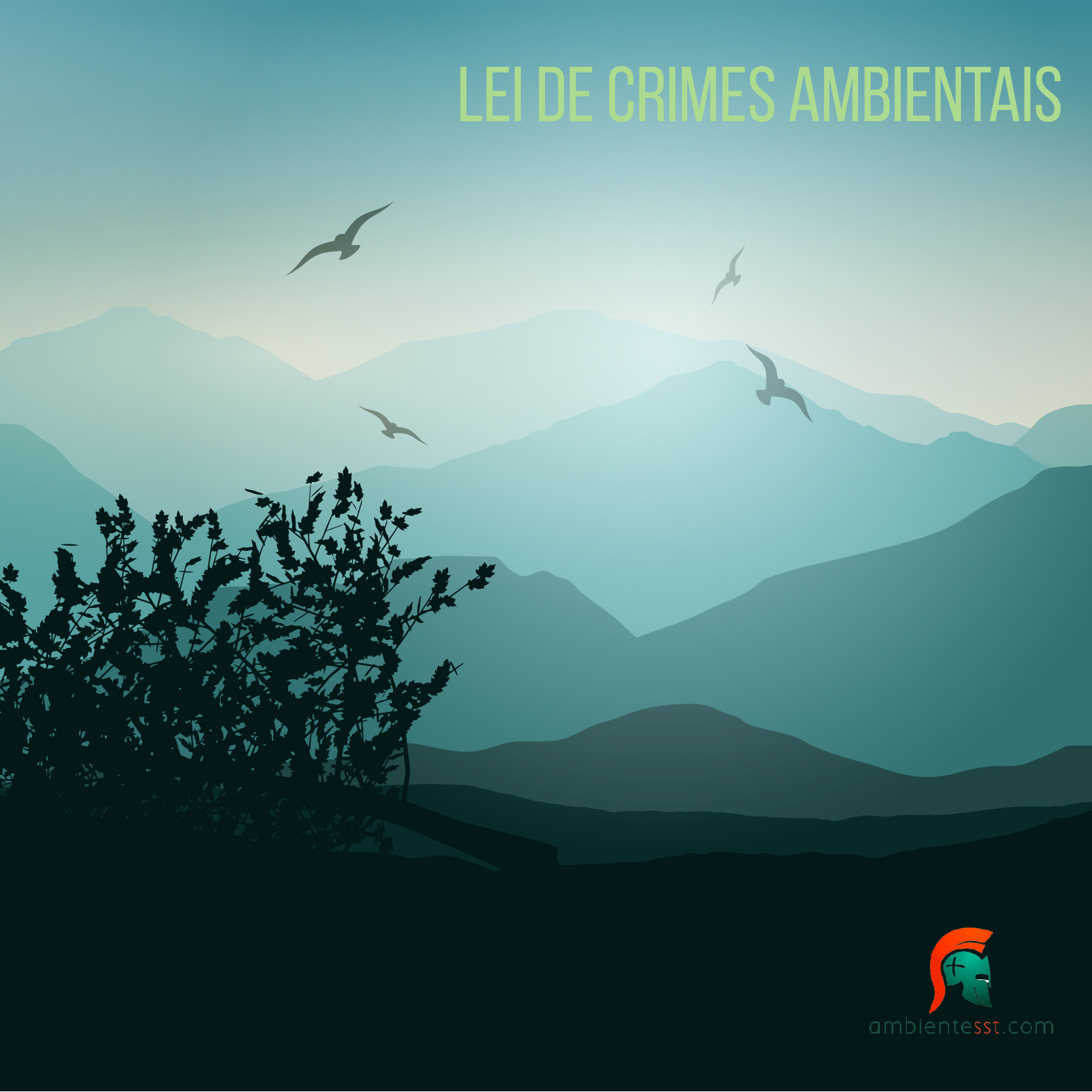 Lei 9605 – A lei de crimes ambientais